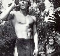 Denny Miller como Tarzan em cena de trailer do filme de 1959 (Foto: Divulgação / MGM)